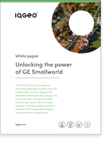 Unlocking the power of GE Smallworld white paper
